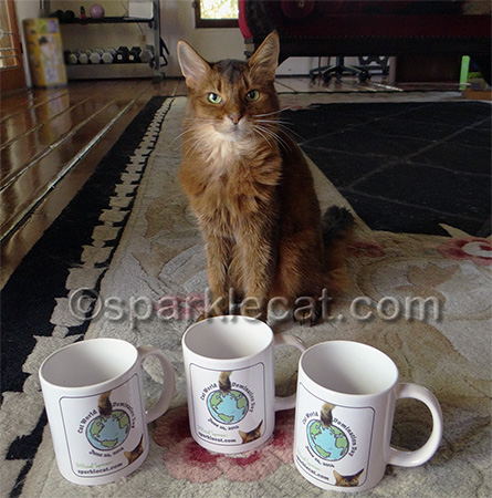Don't worry, Binga did not drink out of any of them.