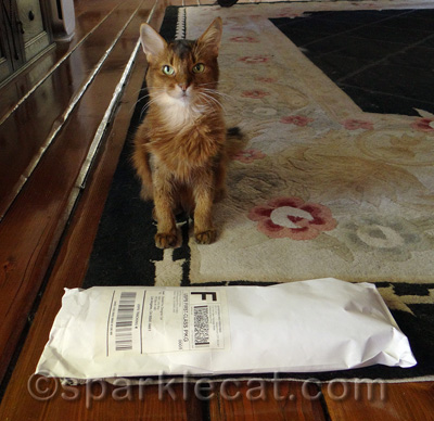 This package is as long as I am!
