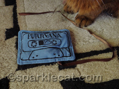 Do ANY of you kitties know what audio tape is?