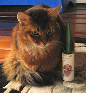 It's cat-sized. Unfortunately, cats don't need lint rollers