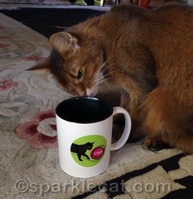 Wondering where my catnip tea order is.