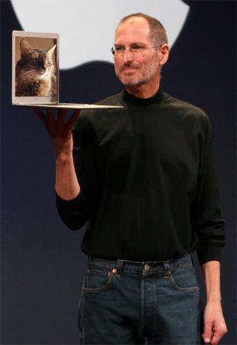 sparkle the designer cat tribute to Steve Jobs