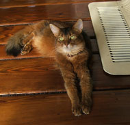 Well, I was hanging out by the heater mainly because it was COLD