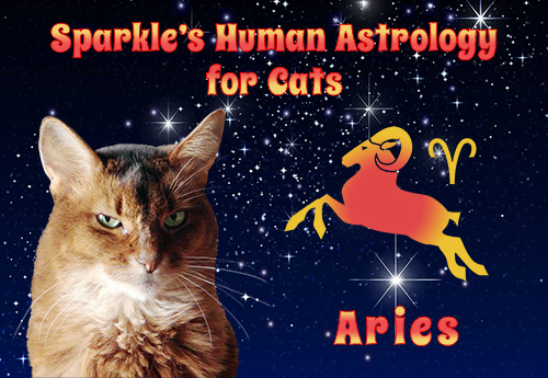 Sparkle's Human Astrology for Cats - Aries