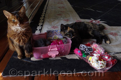 It's a Hello Kitty toy box!
