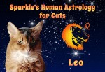 Sparkle's Human Astrology for Cats: Leo