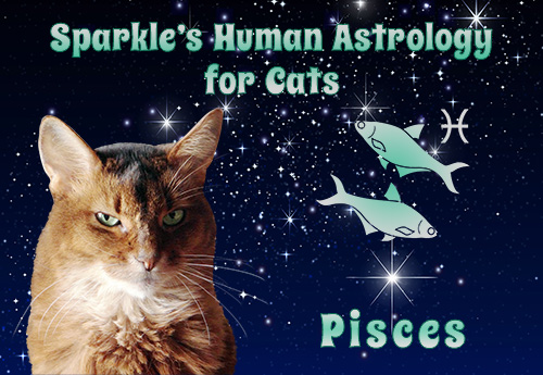 Sparkle's Human Astrology for Cats - Pisces