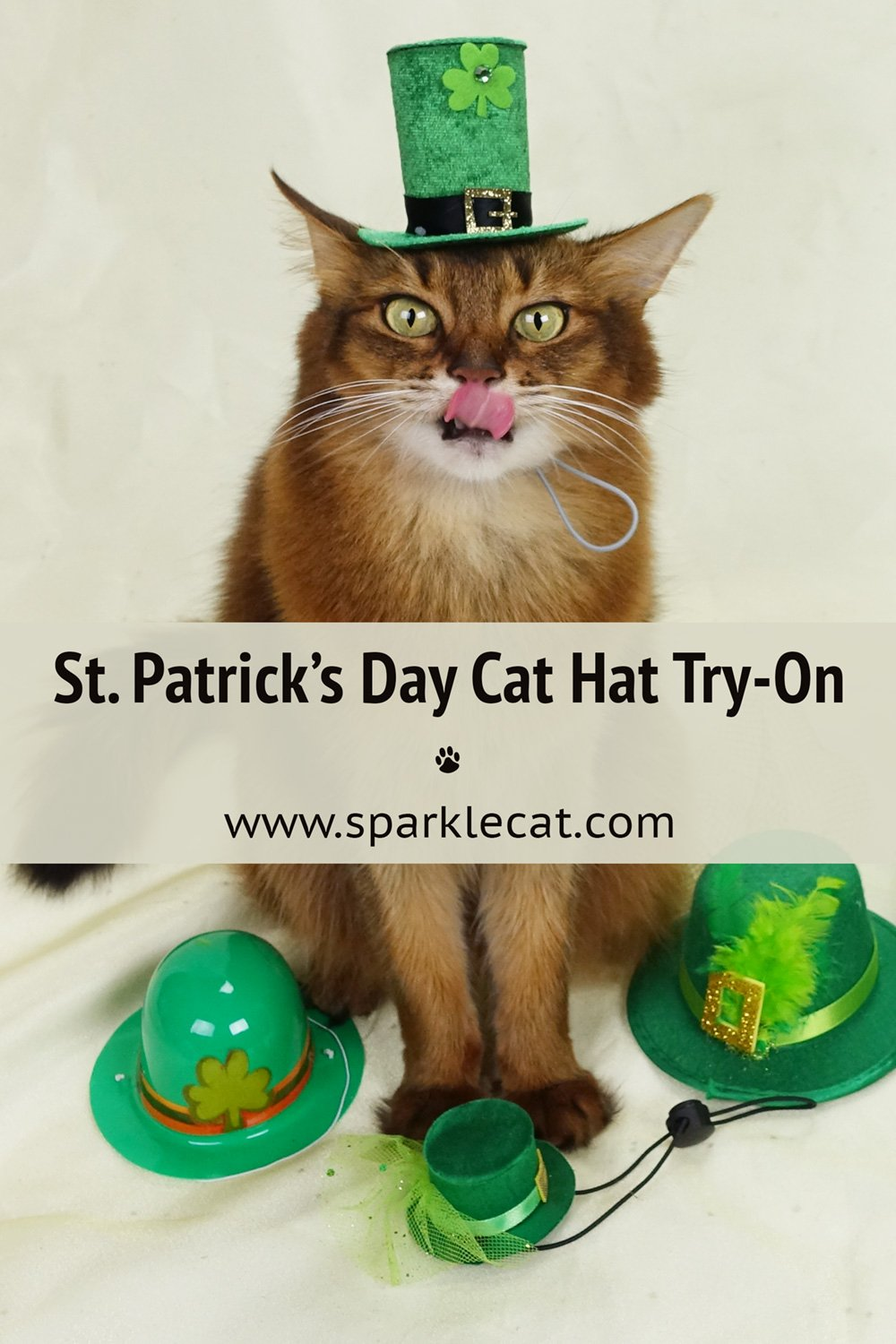 The St. Patrick\'s Hats That Failed