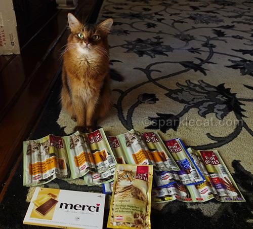 Somali cat with cat treats from Germany