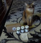 Tabby James Catnip Gift Box Giveaway!