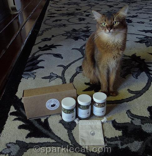 How To Marinate Cat Toys Cat Nip