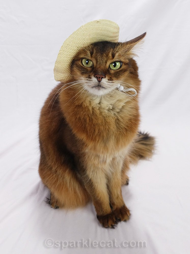 Summer celebrates National Hat Day by modeling a few hats that her readers haven't seen in a while.