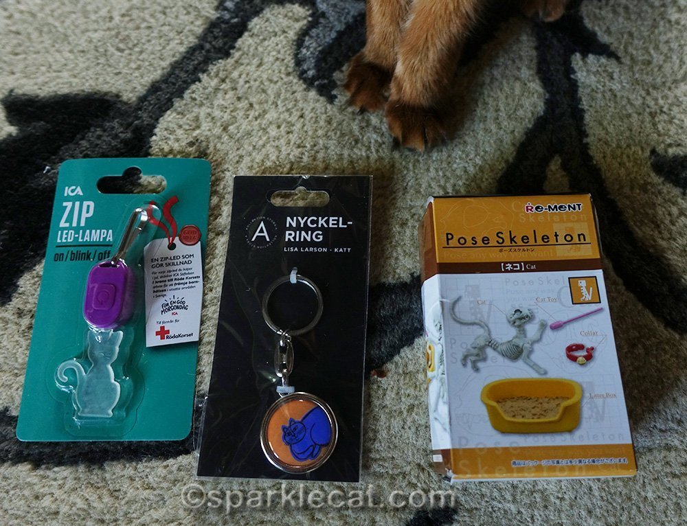 somali cat feet with gifts for her human