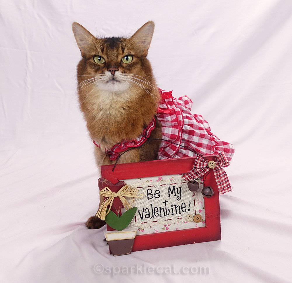 Summer poses with a Valentine sign for a festive, homespun photo session.