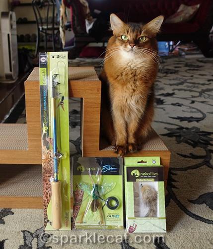 Somali cat posing with new Neko Flies toys