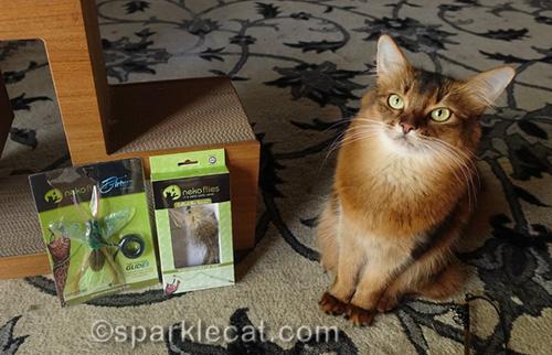 somali cat with two new Neko Flies toys