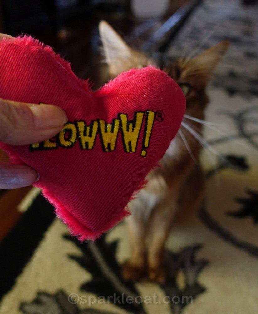human hand holding Yeowww! catnip heart