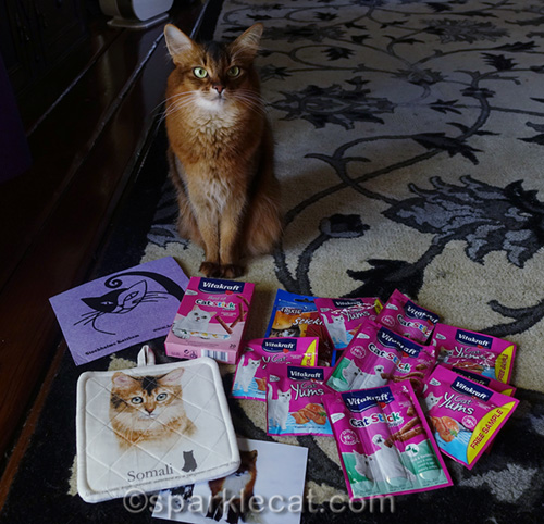 somali cat with her gifts from Sweden