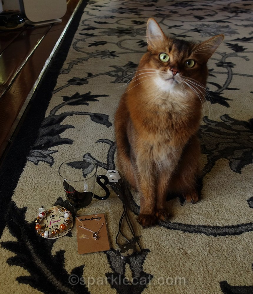 somali cat with valentine's day giveaway items
