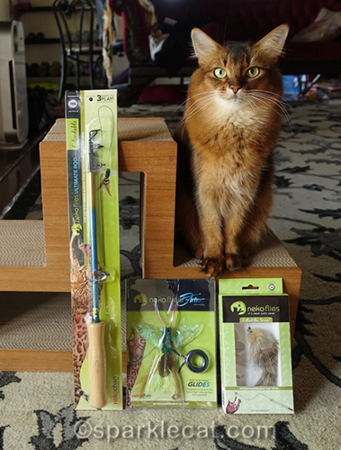 somali cat with Neko Flies toys