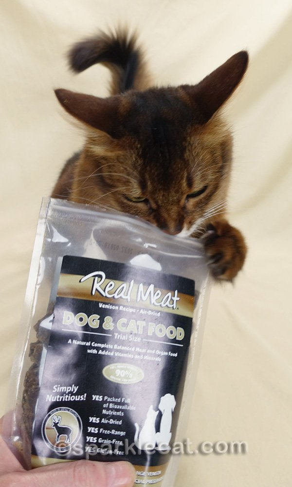 somali cat putting her head into the bag of venison pet food