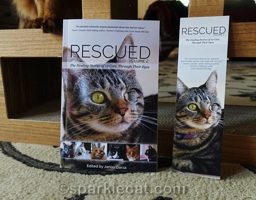 Close up of Rescued Volume 2 and bookmark