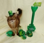Summer models the St. Patrick's hats that didn't look so good.