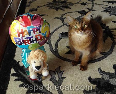 Where are the birthday treats?
