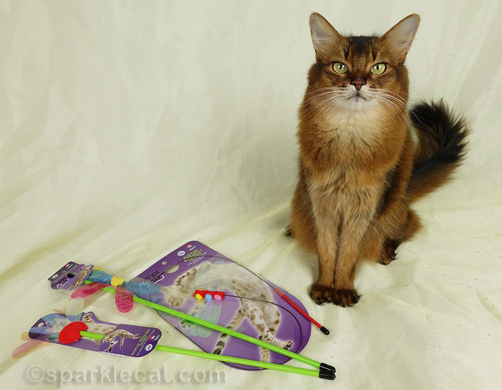 Summer is having a giveaway featuring RompiCatz toys - for a reader and a rescue!