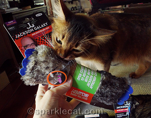 Fun with the jackson galaxy collection cat toys and for Jackson galaxy cat toys