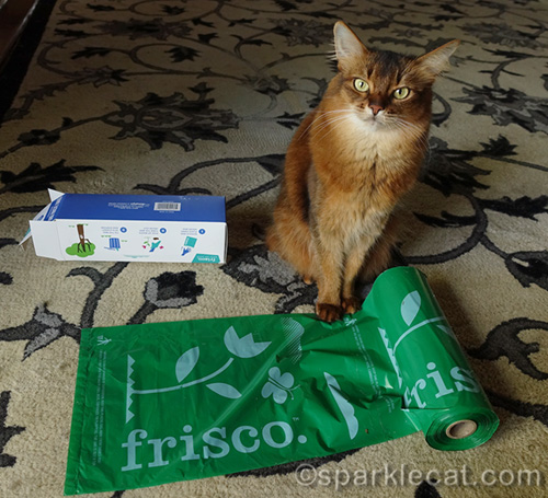 somali cat with roll of Frishco Dog Waste Bags