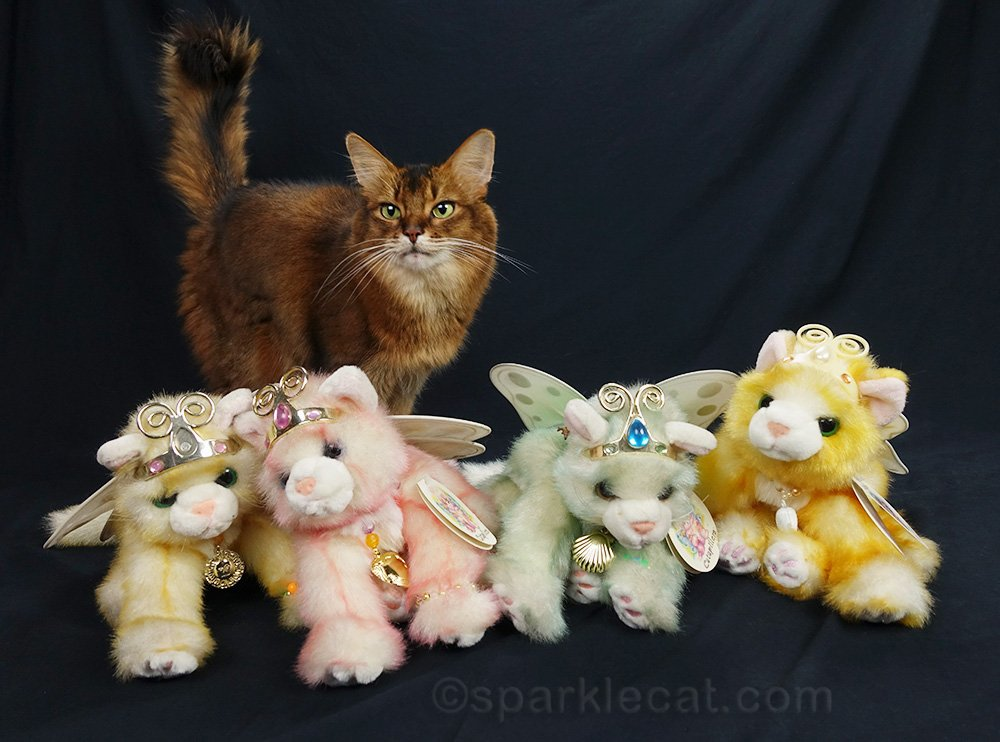 somali cat with winged cat stuffies