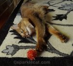 Me and My Orange Sparkle Ball