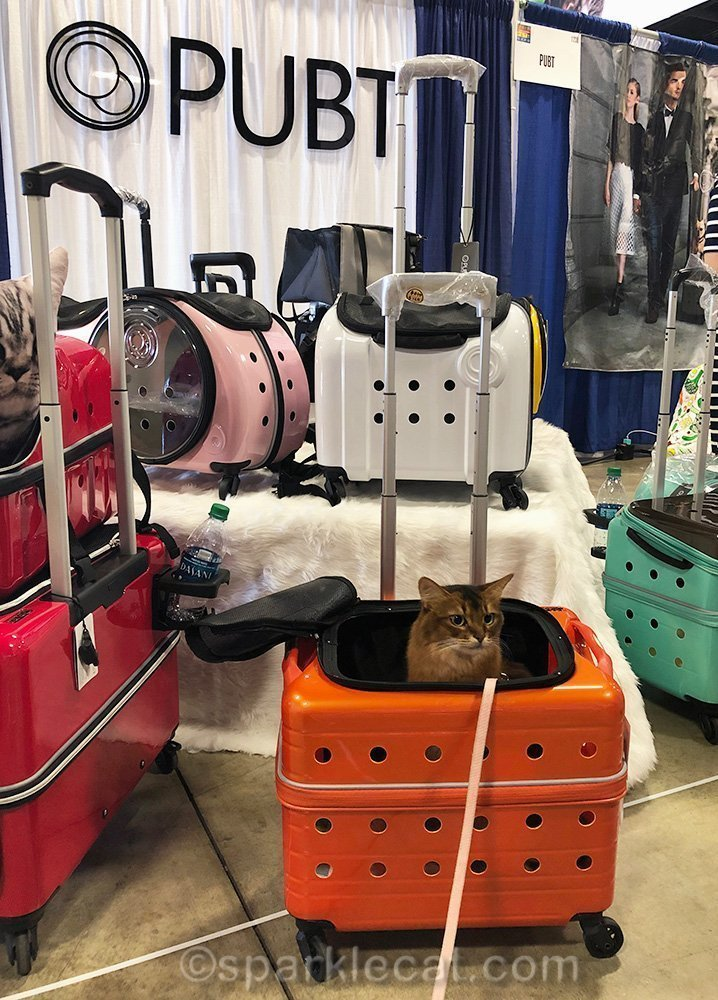 somali cat in cat carrier on display at pet expo