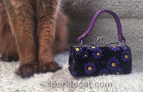little purse next to somali cat legs