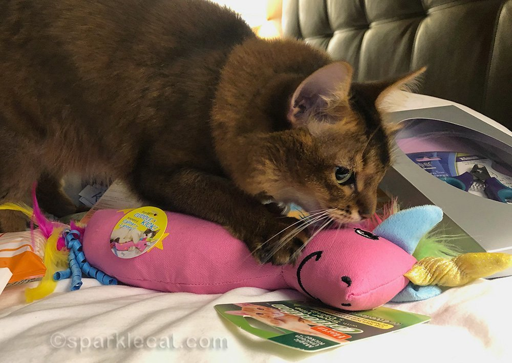somali cat having her way with unicorn catnip toy