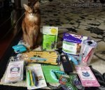somali cat with CWA goodies for giveaway