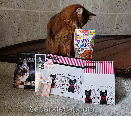 somali cat checking out bag of Party Mix