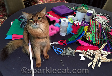 For the record, my human has no crafty skills