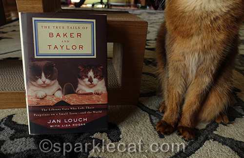 closer shot of Baker and Taylor library cats book