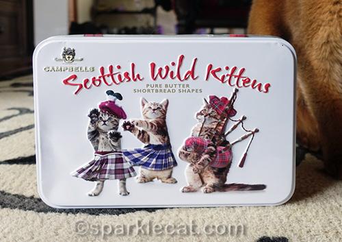 close up of Scottish Wild Kittens tin
