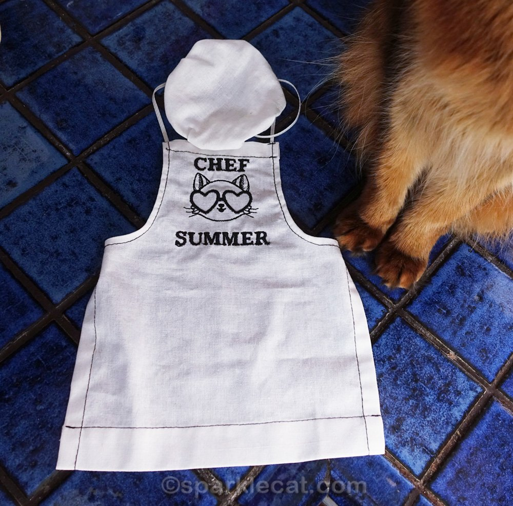 chef hat for cat, with personalized apron