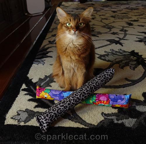 Somali cat with Kitty Kick Stix