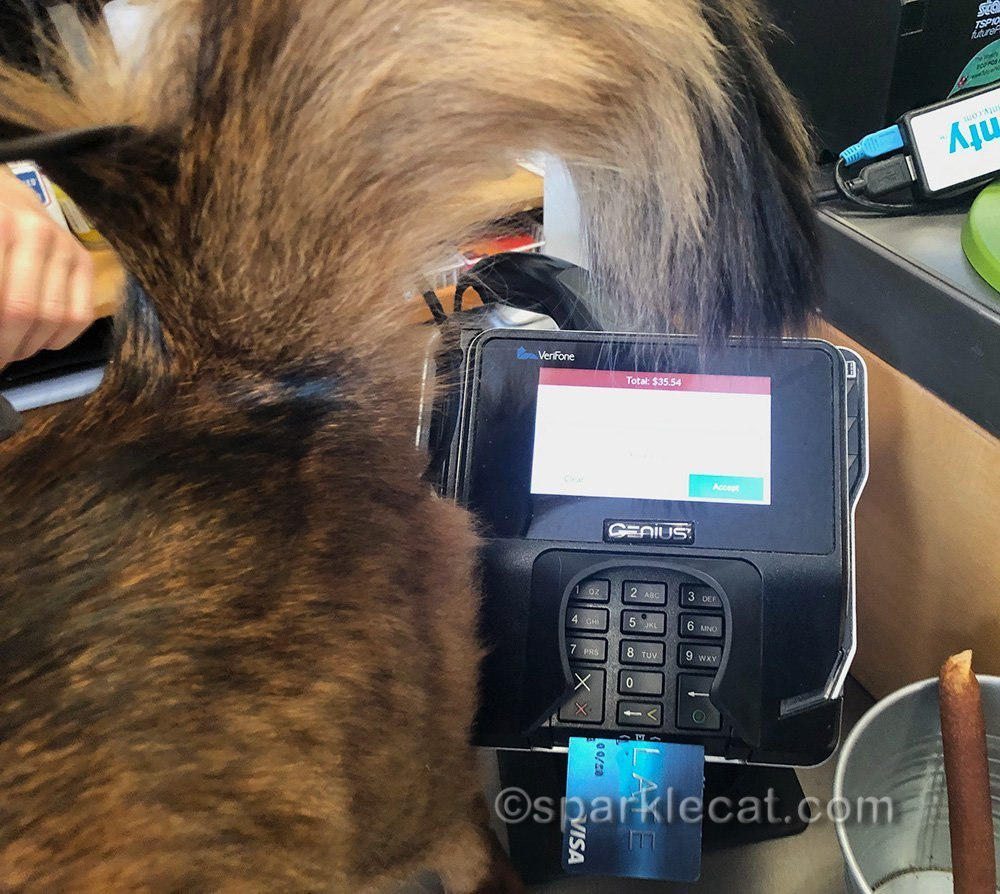 somali cat tail in the way of charge card machine