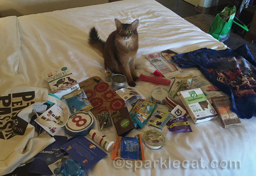 somali cat with BlogPaws cat goodies