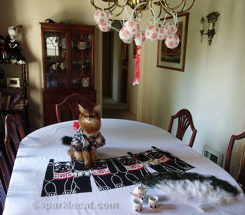 Summer reveals this year's theme of lucky cat world domination day