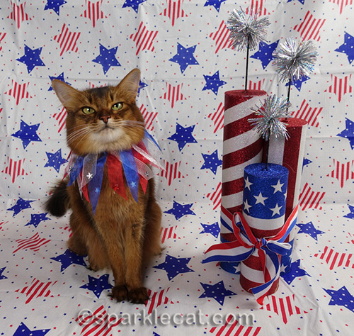 Summer does a photo shoot for the U.S. birthday