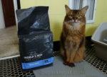 World's Best Cat Litter Zero Mess Is the Best! #alitterbitamazing