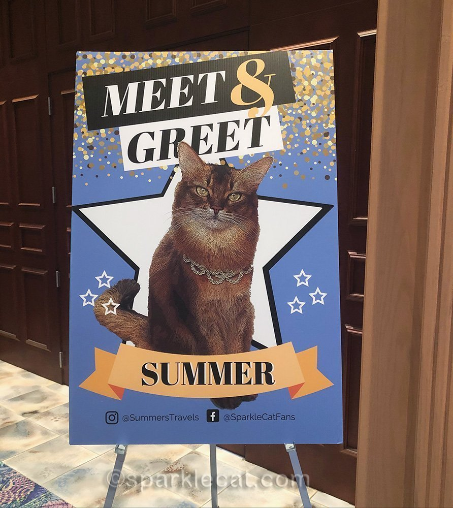 The Meet and Greet sign for Summer