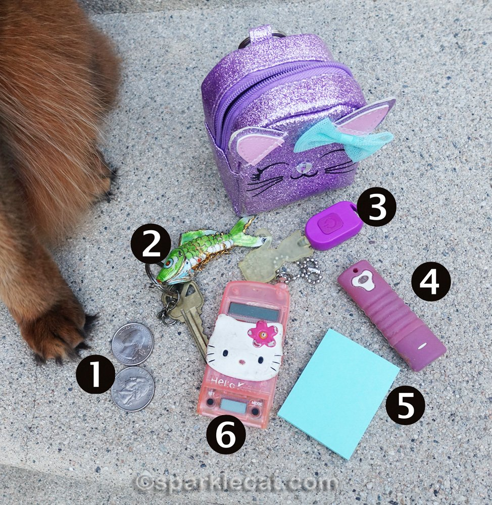 The contents from the cat backpack